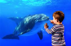 Neuer Farbton bei Puky: Oceanblue!